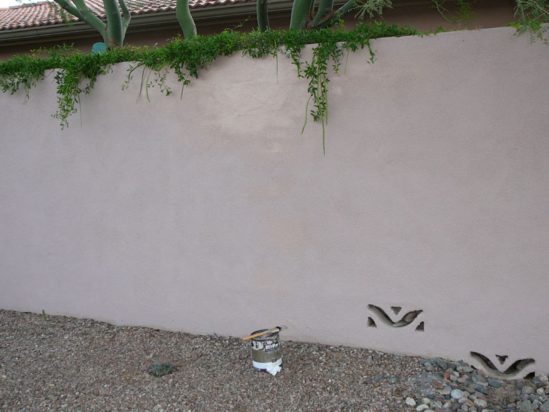 An early morning view of freshly painted stucco.